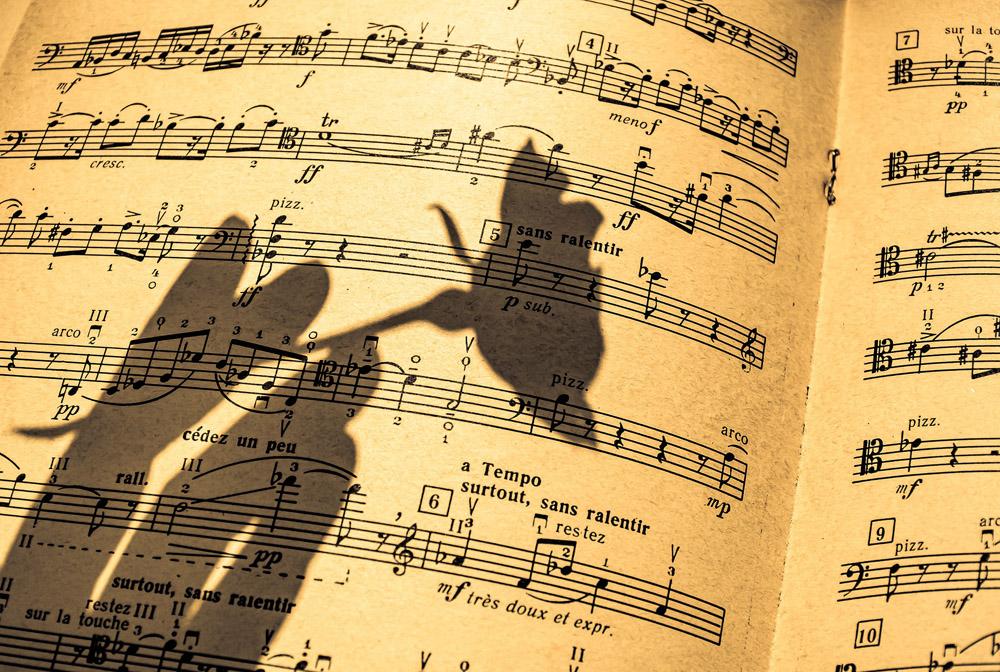 F-Act orkest begeleiding musical